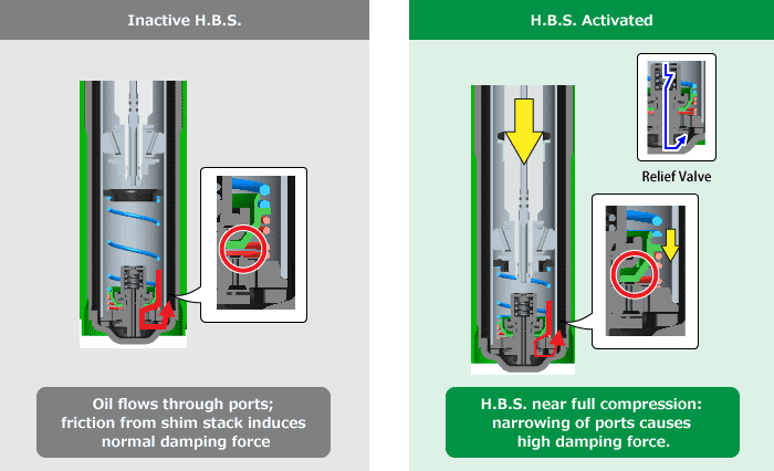 Inactive H.B.S./H.B.S. Activated